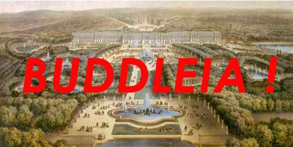 Buddleia (cri de guerre)